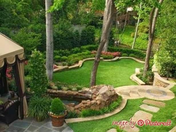 garden and backyard design