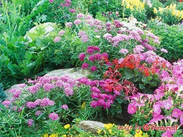 how to design a flower garden